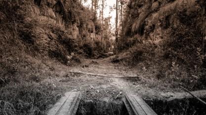 The tracks ahead