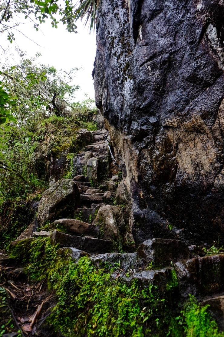 Inca Trail Day 5-2