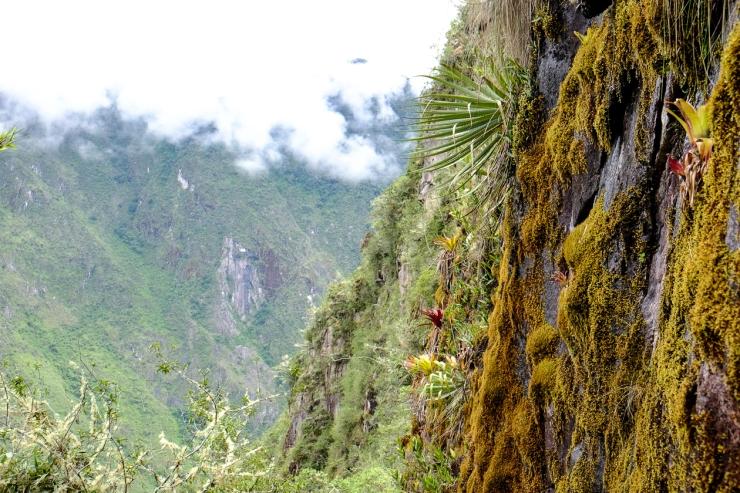 Inca Trail Day 5-39