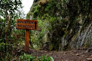 Inca Trail Day 5-41