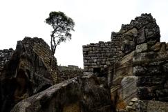 Inca Trail Day 5-62